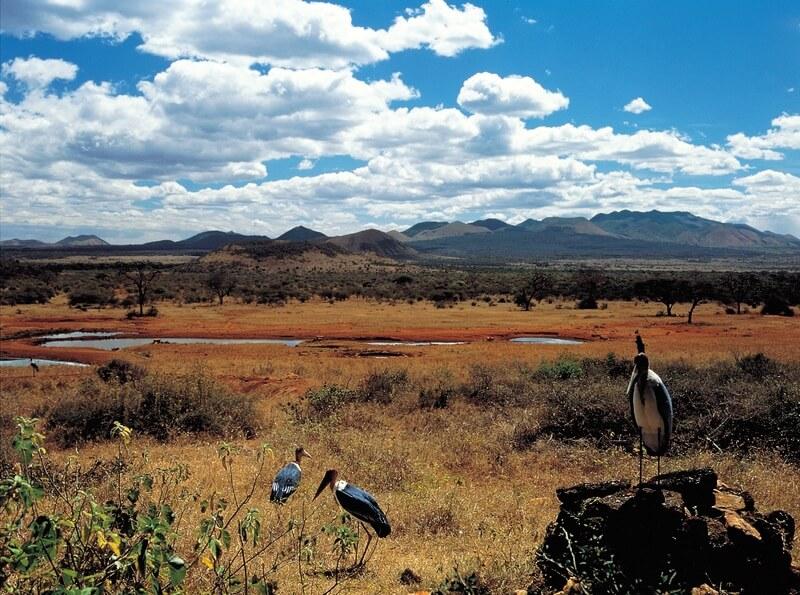 Overton Wildlife Area Preserve
